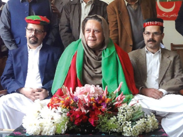 Mussarat Ahmadzeb With Pti Members