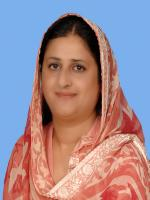 Mahreen Razaque Bhutto