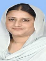 Mahreen Razaque Bhutto HD Wallpaper