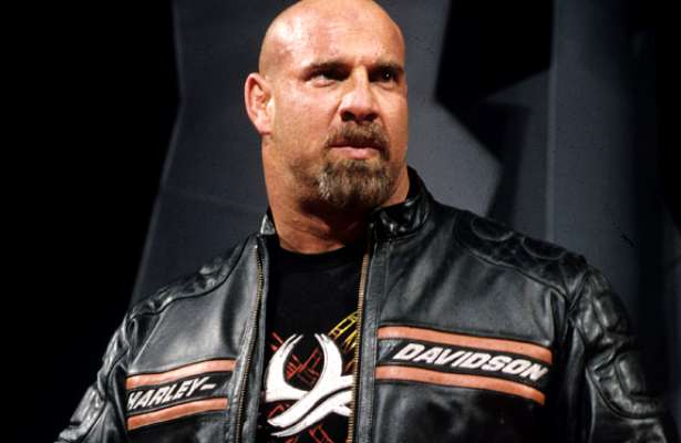 Bill Goldberg Actor