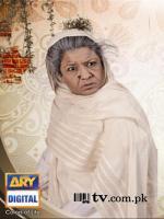 Hina Dilpazeer in Quddusi Sahab