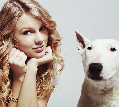Taylor Swift with dog