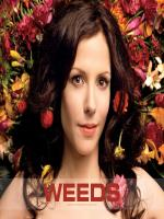 Mary Louise Parker in Movie Weeds