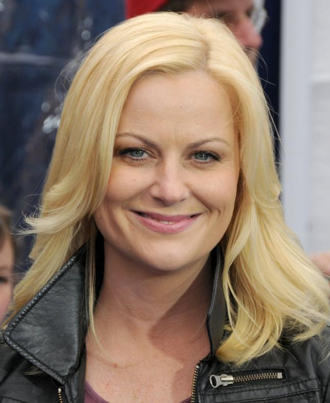 Amy Poehler in Man of the Year