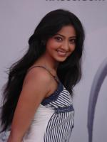 Anjali Sudhakar Photo Shot