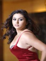 Namitha Modeling Pic