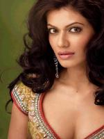 Payal Rohatgi indian dress