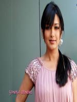 Sonali Bendre Modeling Pic