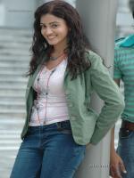 Suhasi Goradia Dhami Modeling Pic