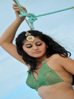 Taapsee Pannu Hot Pic