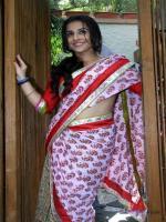 Vidya Balan in sari hd hot
