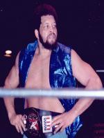 Ernie Ladd Wrestler