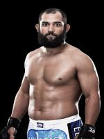 Johny Hendricks Photo Shot