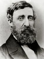 Henry David Thoreau by The Landlord