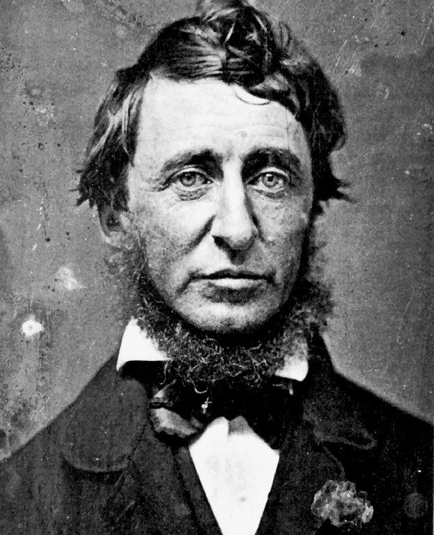 Henry David Thoreau by Autumn