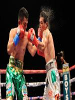 Brian Viloria in Action
