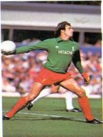 Ray Clemence in Action