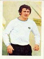 Roy McFarland Photo Shot