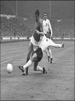 Ray Wilson in Action