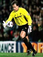 Mark Bosnich in Action