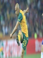 Mark Bresciano in Action