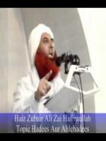 Zubair Ali Zai Speech