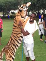 Kevin Hart With Real Tiger Photo