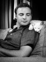 Marlon Brando American Screen Actor