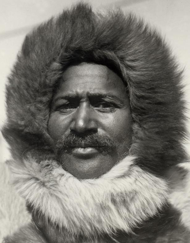 matthew henson artic explorer