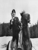 Charles Bronson In Action