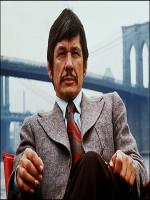 Charles Bronson Television Actor