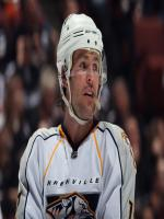 Mike Fisher HD Images