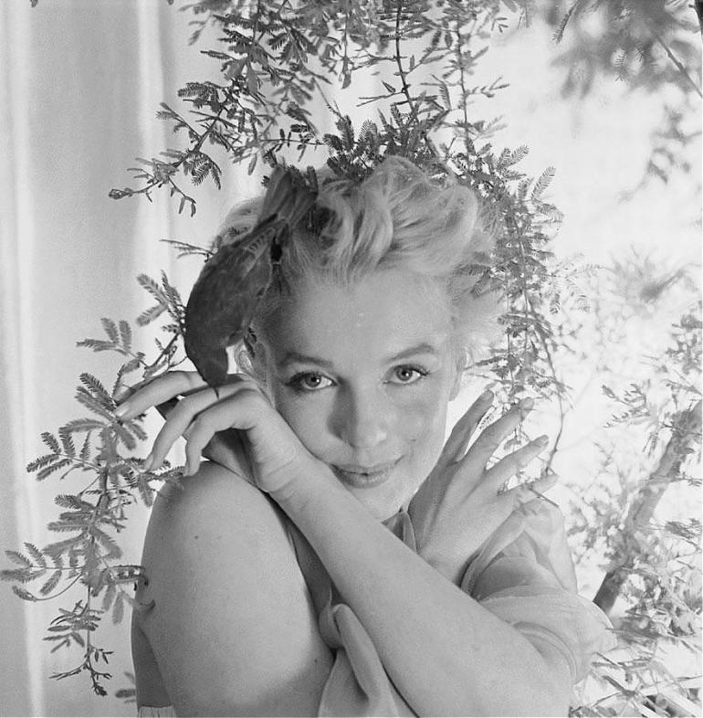 Cecil Beaton HD Images
