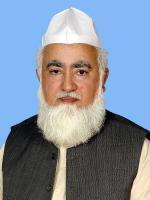 Pir Muhammad Amin Ul Hasnat Shah