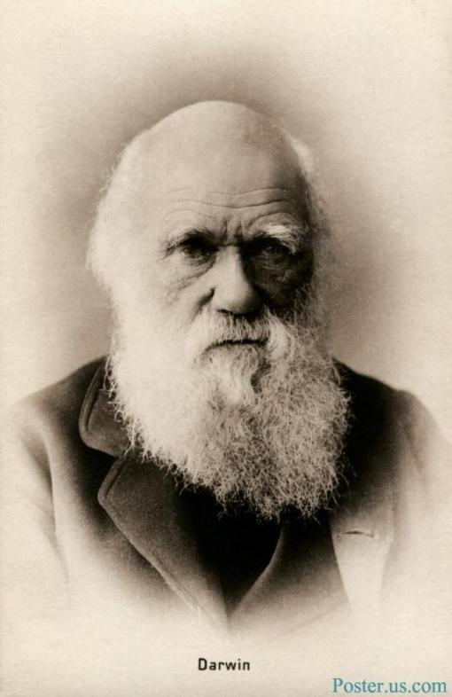 Charles Darwin HD Images
