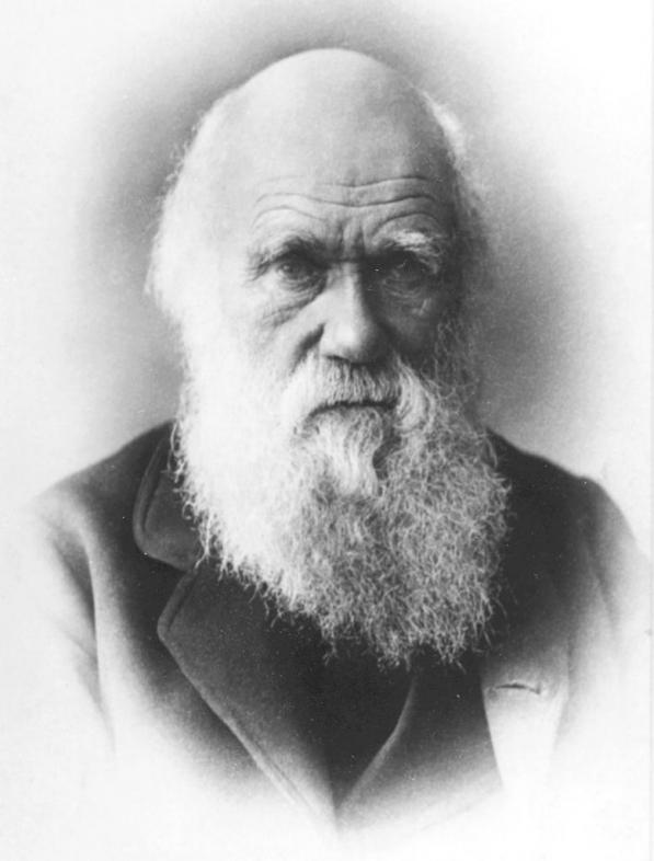 Charles Darwin HD Wallpapers