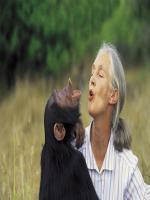 Jane Goodall HD Images