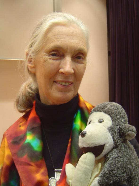 Jane Goodall HD Wallpapers