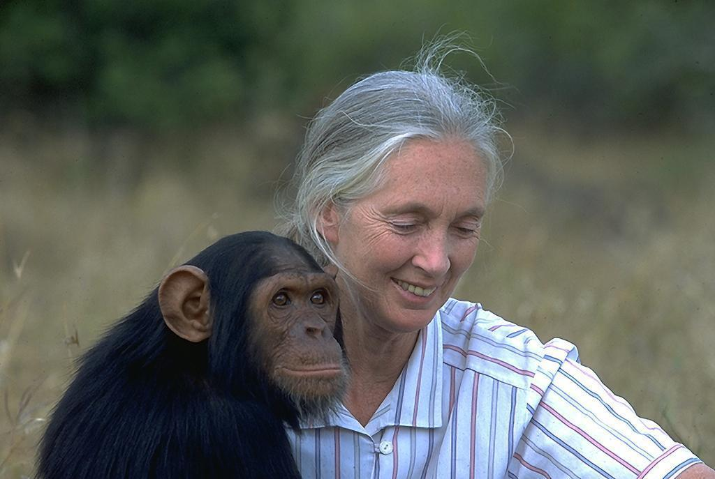Jane Goodall Latest Photo
