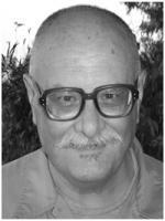 Ivo Cristante