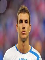 Edin Džeko in FIFA World Cup 2014