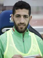 Rafik Halliche in FIFA World Cup 2014