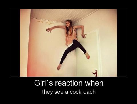 girls reaction when they see a cockroach