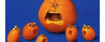 crying mangoes