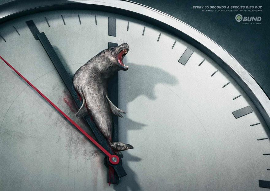 Some Powerful Animal Ad Campaigns