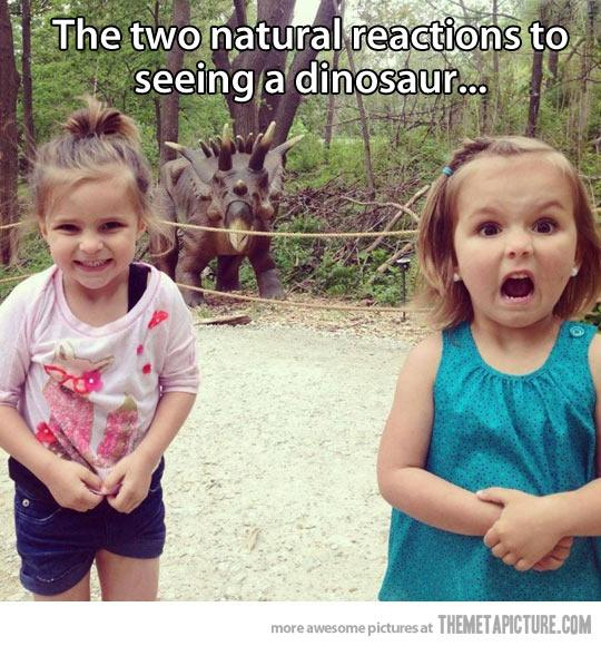 Natural Reaction to Dinosaur