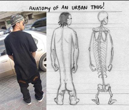 Anatomy of an Urban Thug!!