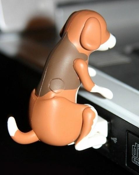 USB Naughty Dog!