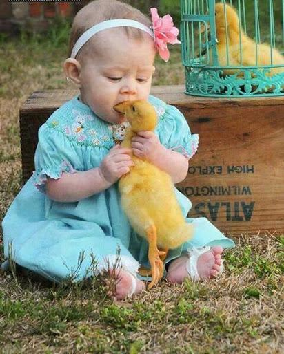 Tastes like chicken....