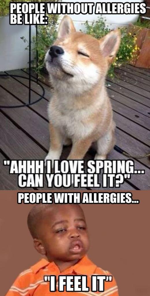Sneezes Ach, I feel it...